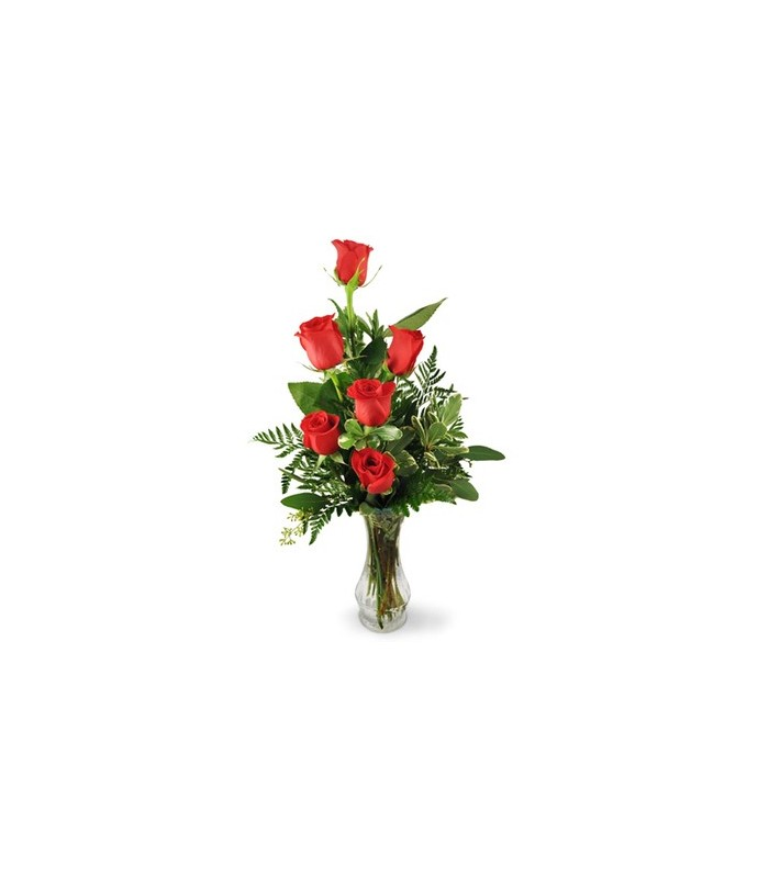 six red rose delivery