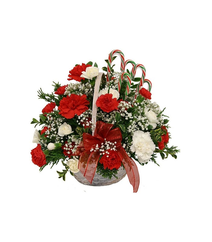 Art in Bloom has all the best flowers to make someone smile, or cheer someone up! Art in Bloom offers a wide selection of flowers and we deliver to Owasso, OK or Nationwide! You can send a long lasting plant or a dozen romantic roses, anything goes!