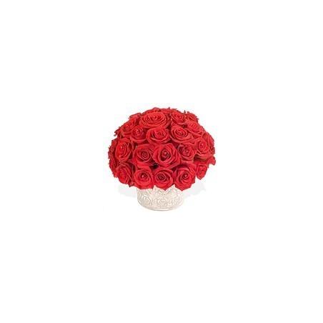 Stunning Red Rose
